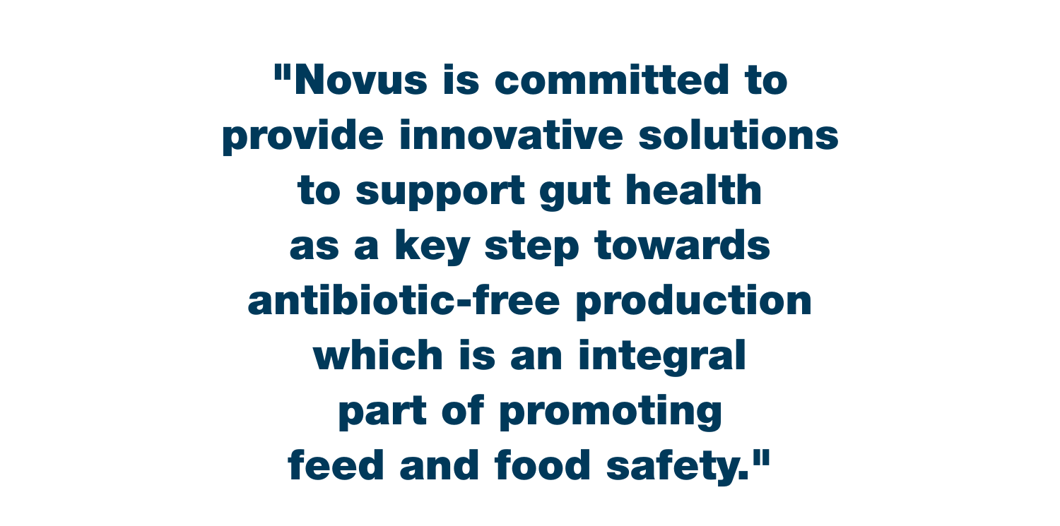 Novus Gut Health