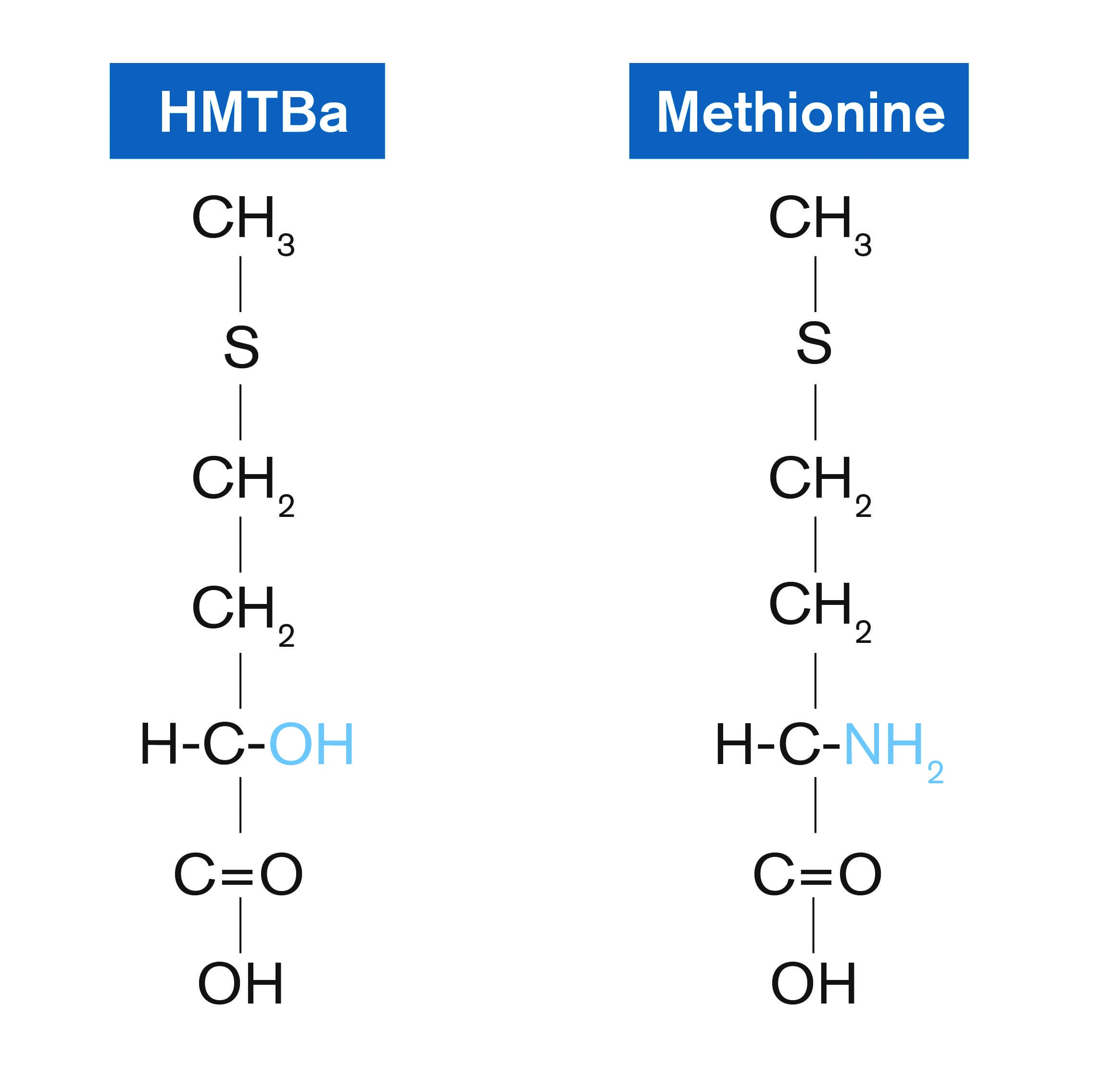 Measuring Up: Methionine Sources