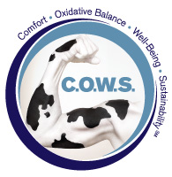 Novus launches C.O.W.S. program for dairy producers in Mexico