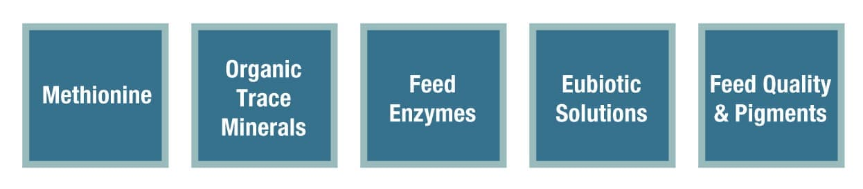 Methionine, Organic Trace Minerals, Feed Enzymes, Eubiotic Solutions, Feed Quality & Pigments
