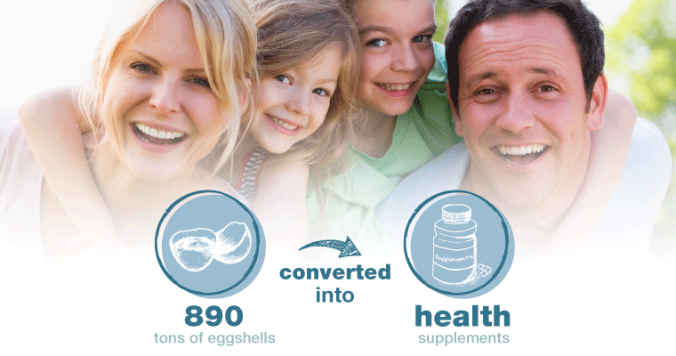Infographic 890 tons of eggshells converted to health supplements